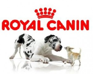 royal_canin_1