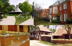 muzeul satului freud geologie