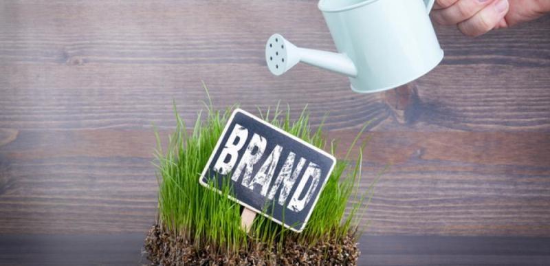 marketing pentru a creste popularitatea brandului tau